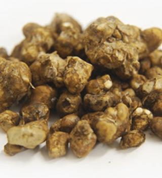 psilocybin truffles